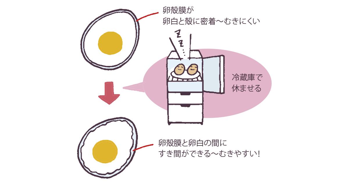 茹で 卵 むき か た